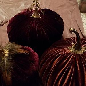 Beautiful Velvet Pumpkins